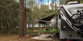 Lake View Campsite at Bill Frederick Park