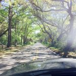 South_Carolina_Road_Truck