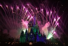 Fireworks over Cinderella's Castle at Disney World