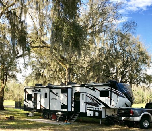 Fifth wheel RV camped under the trees
